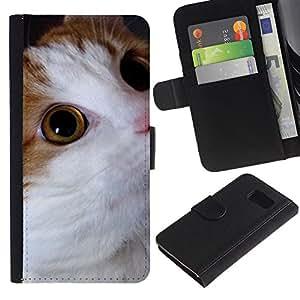 Cymric American Bobtail Somali Cat - la tarjeta de Crédito Slots PU Funda de cuero Monedero caso cubierta de piel Samsung Galaxy S6