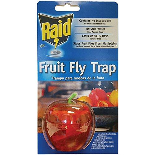 Raid Apple Fruit Fly Trap