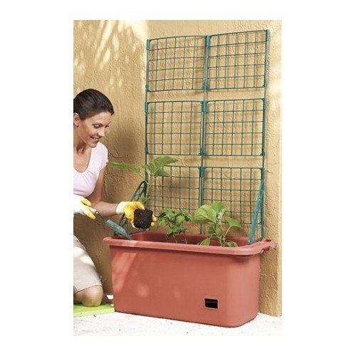 Vegetable Planter Box Comes With Trellis Mobile Perfect For Home