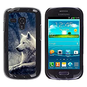 Impact Case Cover with Art Pattern Designs FOR Samsung Galaxy S3 MINI 8190 Wolf White Bright Magical Forest Night Tree Betty shop