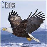 Eagles 18-Month 2014 Calendar (Multilingual Edition)