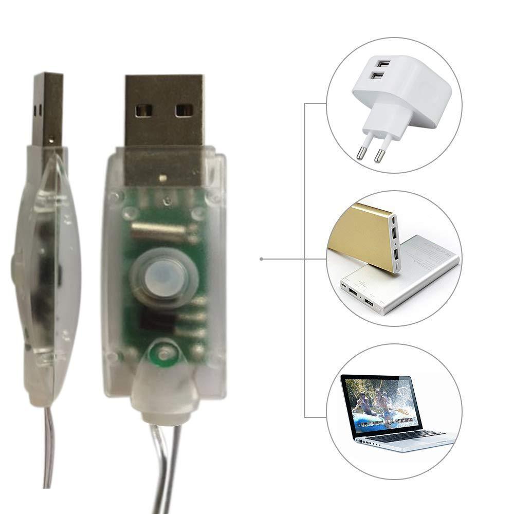 BXROIU 2 Guirlandes Lumineuses 100 LEDs 10M Fil de cuivre Blanc Chaud,Prise USB avec Télécommande Lumière Etoilée pour Décoration Noël Soirée Mariage Fête