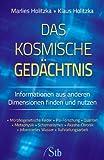 Das kosmische Gedächtnis - Informationen aus anderen Dimensionen finden und nutzen