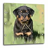 3dRose dpp_4372_2 Rottweiler Puppy Wall Clock, 13 by 13-Inch For Sale
