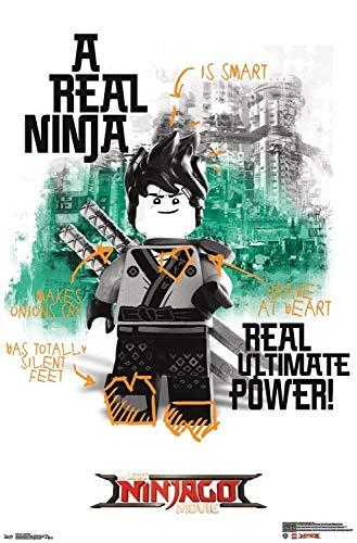The Poster Corp Lego Ninjago - Real Ninja Artistica di ...