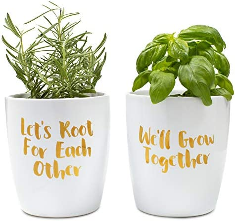 Positve Thoughts Ceramic Planters Pack product image