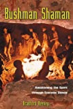 img - for Bushman Shaman: Awakening the Spirit through Ecstatic Dance book / textbook / text book