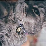 Necoichi Chirimen Hanabi Fireworks Cat Collar