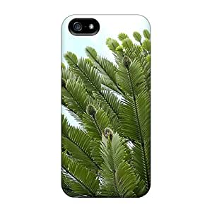 Tough Iphone TIk1540vxlE Cases Covers/ Cases For Iphone 5/5s(wollemi Pine Wollemia Nobilis)
