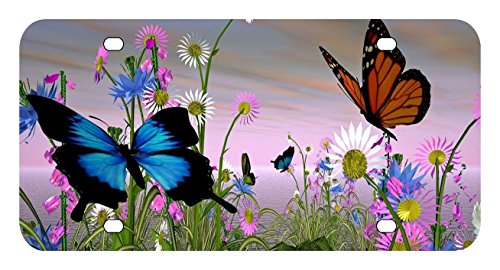 L274 BUTTERFLY License Plate Front Custom Novelty Tag Vanity Frame Holder Wrap (Custom Vanity)