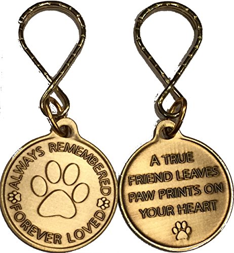 RecoveryChip Always Remembered Forever Loved Pet Memorial Keychain Dog Paw Print Design - One Token