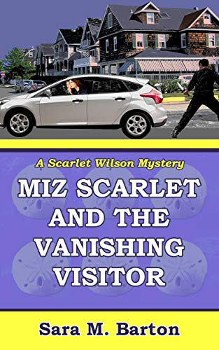 Visitor Unexpected Book - Miz Scarlet and the Vanishing Visitor (A Scarlet Wilson Mystery Book 2)
