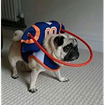Muffin's Halo For Blind Dogs - Quarterback Style (M)
