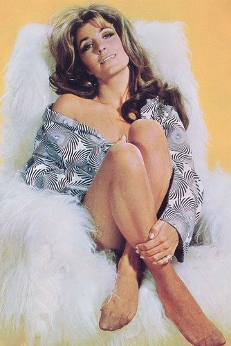 Michele Carey Busty Sexy Leggy Pin Up 24X36 Poster from Silverscreen