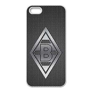 DASHUJUA Net B Hot Seller Stylish Hard Case For Iphone 5s