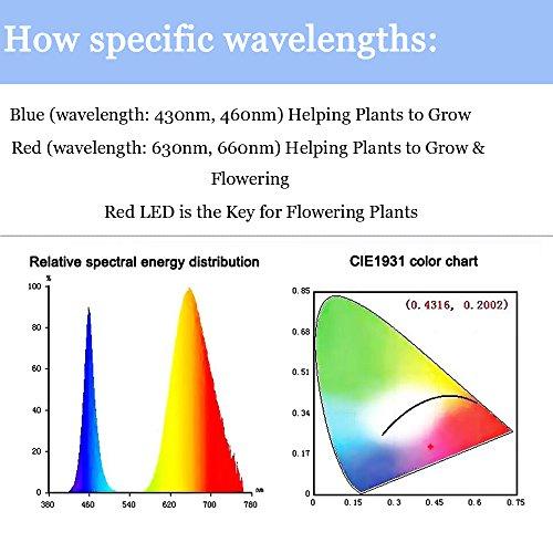 Klarlight Led Plant Grow Flood Light 50 Watt Grow Led Cob