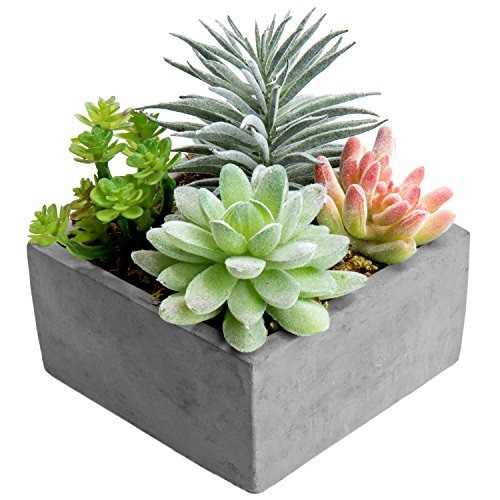 - MyGift Artificial Succulent Plants Arrangement in Grey Square Cement Pot (Assortment 1)