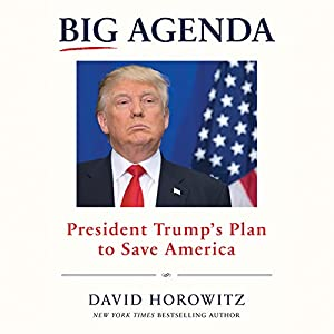 Big Agenda Audiobook