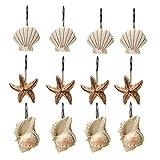 Beach Shower Curtain AGPtek® 12 PCS Fashion Decorative Home Bathroom Seashell Shower Curtain Hooks (Seashell: Light Brown; Starfish: Tan; Conch: Light Brown)