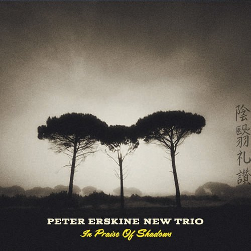 Peter Erskine - In Praise of Shadows  cover