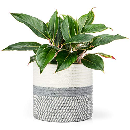 "Dahey Cotton Rope Plant Basket Small Woven Storage Basket for Up to 7"" Planter, 7.5"" x 8"" Decorative Flower Pot Cover Closet Storage Bin Table Desk Organizer Modern Home Decor, Grey and White"