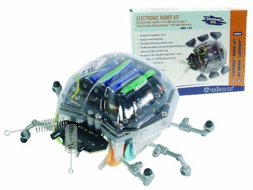 Ladybug Robot - 2