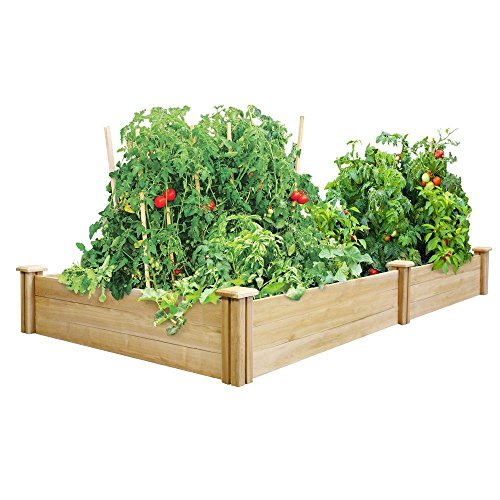 - Greenes 4 Ft. X 8 Ft. X 10.5 In. Cedar Raised Garden Bed