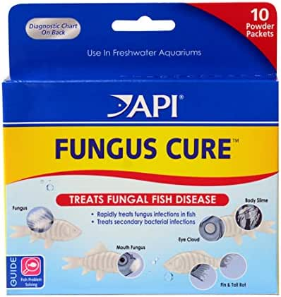 API FUNGUS CURE Freshwater Fish Powder Medication 10-Count Box