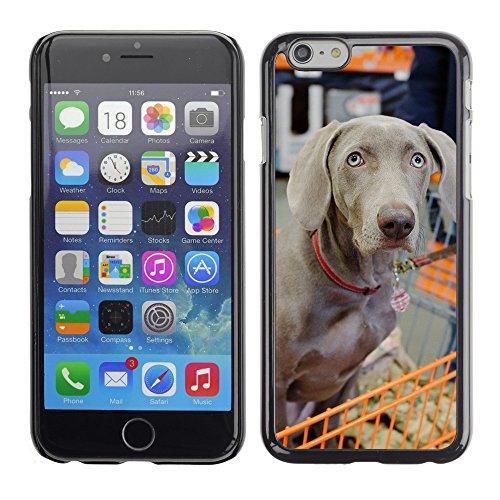 """Premio Sottile Slim Cassa Custodia Case Cover Shell // F00009691 chien // Apple iPhone 6 6S 6G PLUS 5.5"""""""