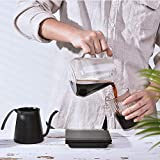 Soulhand Long Narrow Spout Coffee Pot Mini Pour