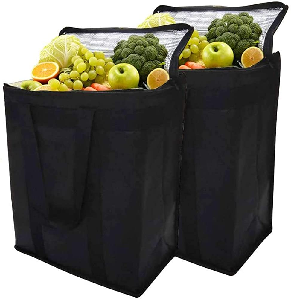 Set of 2 Insulated Cooler Bag Reusable Lunch Bag Collapsible Cooler with Dual Zipper for Food Delivery,Keep Food Warm or Cold,Medium Size 11.8