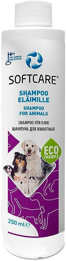 M-SOLUCIONES - Softcare Champú para Perros y Gatos. Sin Sulfatos Fragancias Colorantes.: Amazon.es: Productos para mascotas