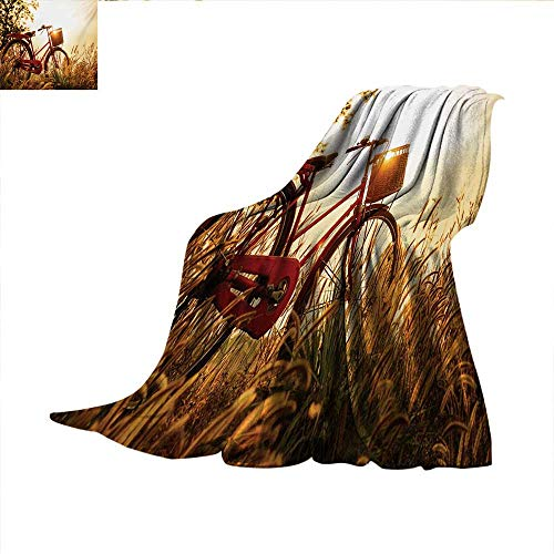 (Bicycle Warm Microfiber All Season Blanket Classic Retro Style Bike in Sepia Tones Romantic Sunset Rural View Picture Warm Microfiber All Season Blanket for Bed or Couch 50
