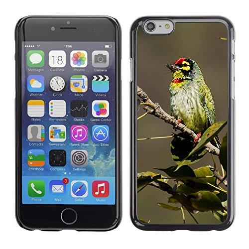 """Premio Sottile Slim Cassa Custodia Case Cover Shell // F00032715 songbird Colorful // Apple iPhone 6 6S 6G 4.7"""""""