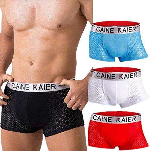 Mesh Microfiber Trunk - Astarin Men's Underwear, Micro Modal Mesh Low Rise Silk Sexy Trunks Underwear for Men Pack(White-red-Blue,US M)