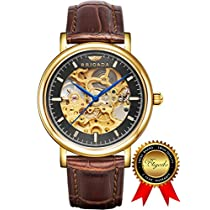 BRIGADA Swiss Watches for Men, Luxury Automatic Hollow Mechanical Gold Watch for men, Great Gift for Families, Lover, Friends or Yourself