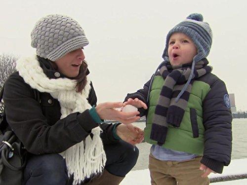 Raising A Family In Rotterdam