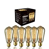Edison Bulbs of 6 Pack - Wootly Long Life Edison Style Marconi Squirrel Cage Filament Bulb (6, 60 Watt)