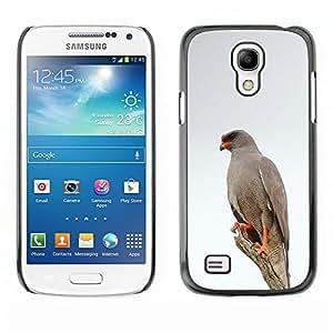 Hawk White Bird Invierno Naturaleza Gris- Metal de aluminio y de plástico duro Caja del teléfono - Negro - Samsung Galaxy S4 Mini i9190 (NOT S4)