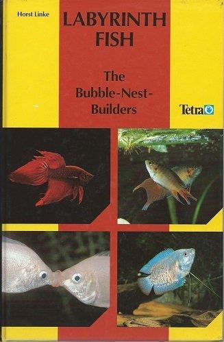 Labyrinth Fish: The Bubble Nest Builders (Nest Builder)