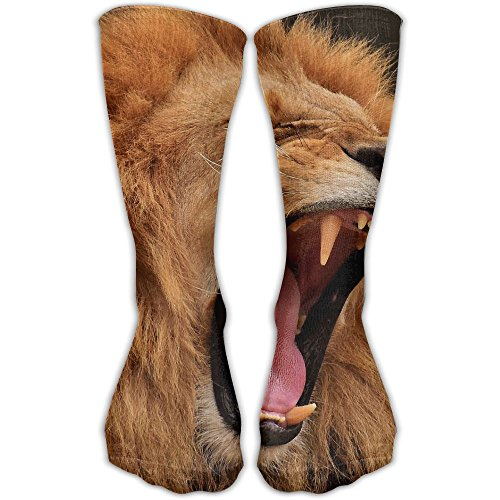 Africa Wildlife Lion Good Luck Sock Unisex Good For Gift Idea by WOYRBUZ