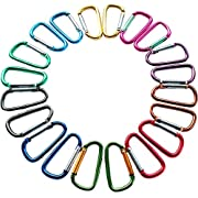 Gold Lion Gear 2 /5cm Carabiner Assorted Colors D Shape Spring-loaded Gate Aluminum Carabiner for Home, Rv, Camping, Fishing, Hiking, Traveling and Keychain, Pack of 20