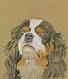 King Charles Cavalier Spaniel Original Drawing 7 x 8 Dog Pet Art -Carla Smale