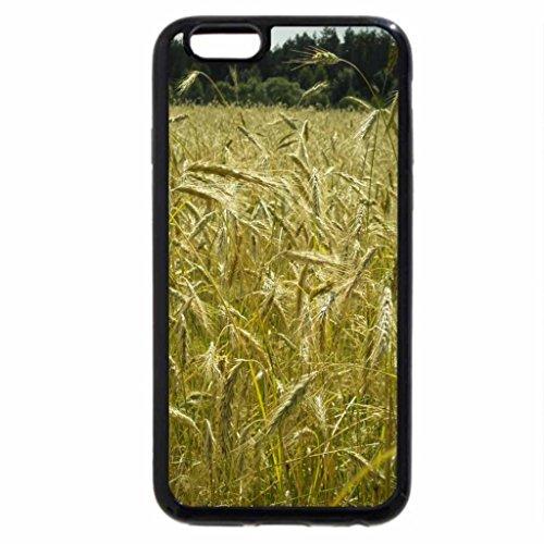iPhone 6S / iPhone 6 Case (Black) Rye Field