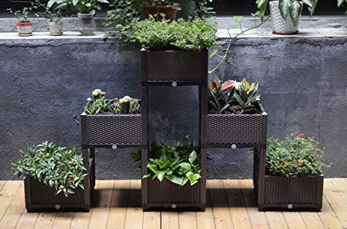 D'vine Dev Easy Grow Raised Garden Planters Pyramid - 6.1 ft. 3.5 ft. - Three Layers Pyramid Planter - Manual Drain - Indoor/Outdoor Large Polypropylene Resin Raised ()