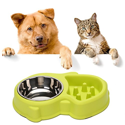 Slow Feeder Cat Bowl and Stainless Steel Dog Bowl for Feeding and Watering Interactive Bloat Stop Pet Bowl