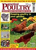 Magazines : Practical Poultry