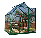 Palram Harmony 6x6 Green Greenhouse - Clear Polycarbonate, Aluminum Frame, Base Included