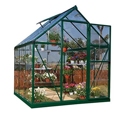 Palram Nature Series Harmony Hobby Greenhouse – 6 x 4 x 7 Forest Green (Discontinued by Manufacturer)