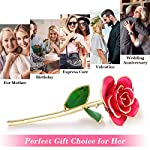 Ejoyous-Gold-Plated-Rose-24K-Gold-Dipped-Real-Rose-Flower-Gift-for-Lover-Mom-Wife-Daughter-Girl-Friend-Present-on-Valentines-Day-Wedding-Anniversary-Birthday-Proposal-Reward-Pink-with-Stand